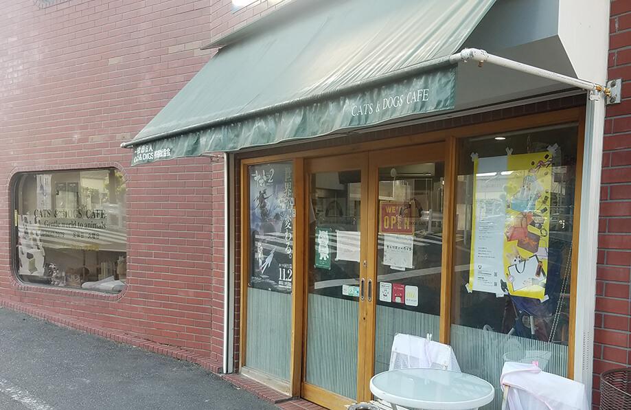 保護犬カフェ CATS & DOGS CAFE