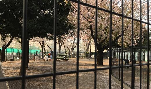 落合南公園